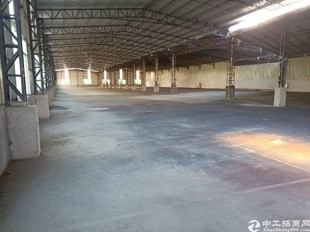 园洲新出钢构4000平方带超大空地厂房-图2