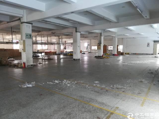 茶山新出二楼标准厂房2500平