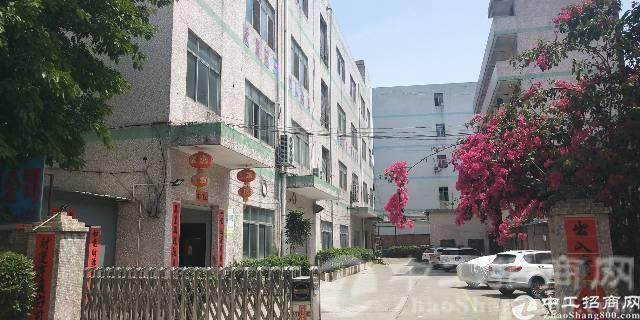 宝屯村经典独院空出厂房三楼1000平方便宜招租,南北通透