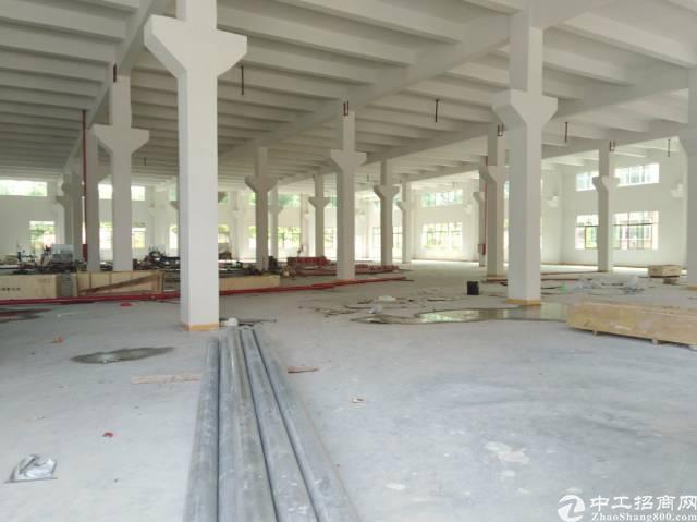 寮步新出重工业全新厂房一楼3000平高度7.8米23元,二楼