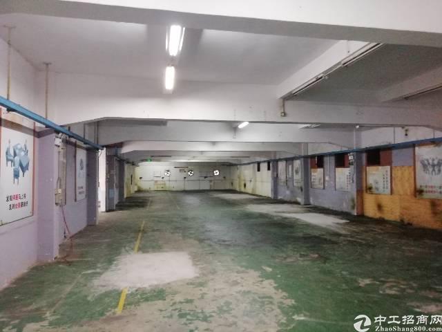 凤岗镇官井头刚出独院标准一楼690平米适合各种行业精装办公室