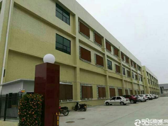 全新独立标准厂房8000平米出售
