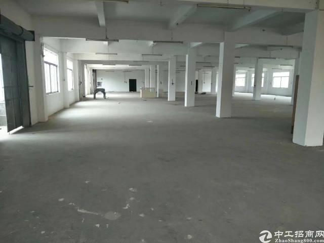 茶山镇原房东一楼厂房每平米只要12元