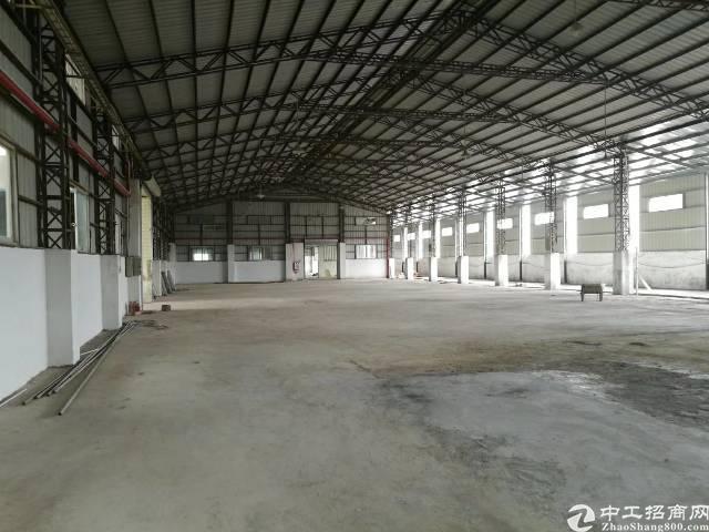 茶山镇原房东出租,新建滴水12米单一层,1700平米电250