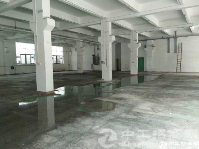 厚街沙塘标准一楼2200平方层高6米腿牛腿厂房招租,电350