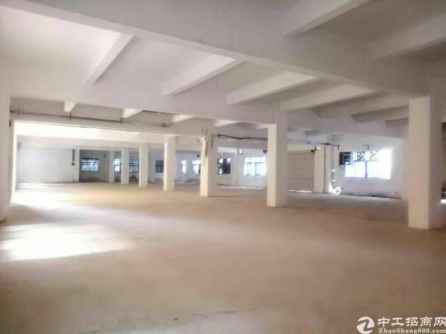 松岗14块厂房出租厂房1100平,带电梯。