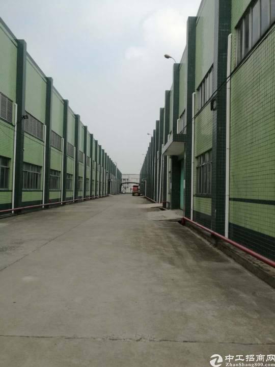 博罗滴水13米的单一层独院厂房出租