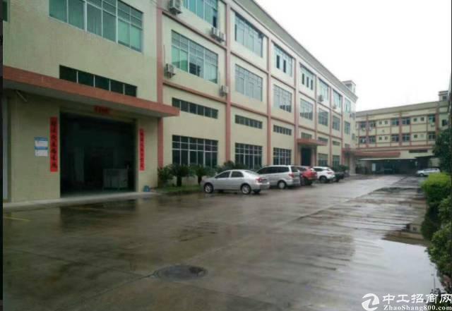 万江环城路旁原房东独院标准楼房出租5000平方租12元
