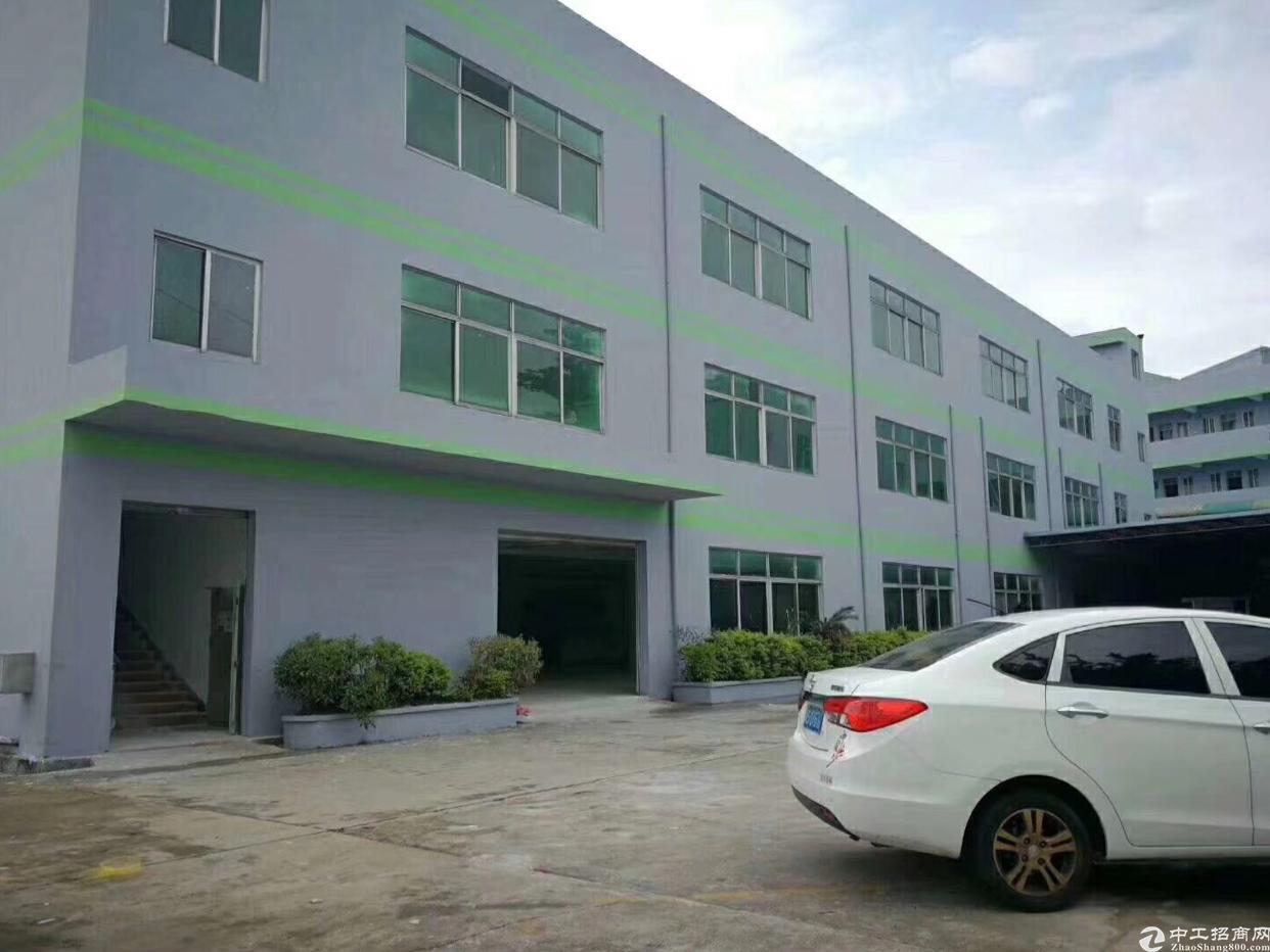 新出原房东标准厂房5500平方米
