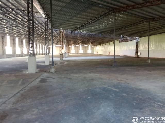 园洲新出钢构4000平方带超大空地厂房-图3
