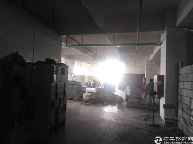 沙井新桥新出楼上570平方厂房