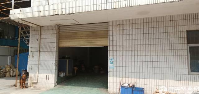 广田路边新出一楼500平米厂房