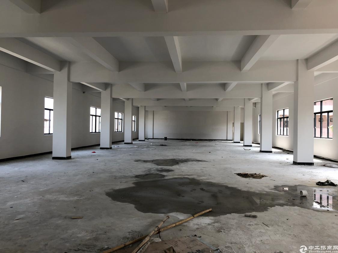 塘厦清湖头全新厂房4层4000平米可以分租-图2