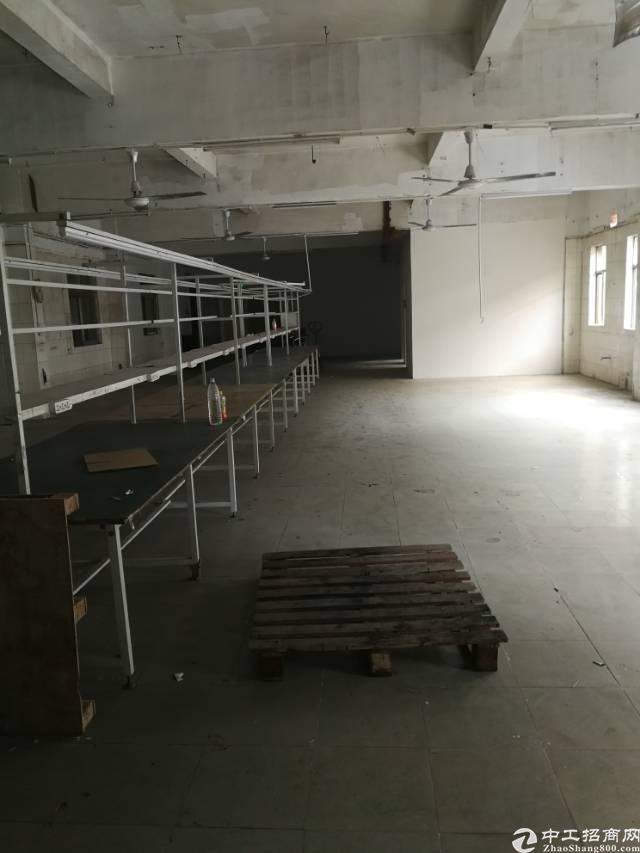 凤岗镇雁田新出带办公室标准厂房2楼750平