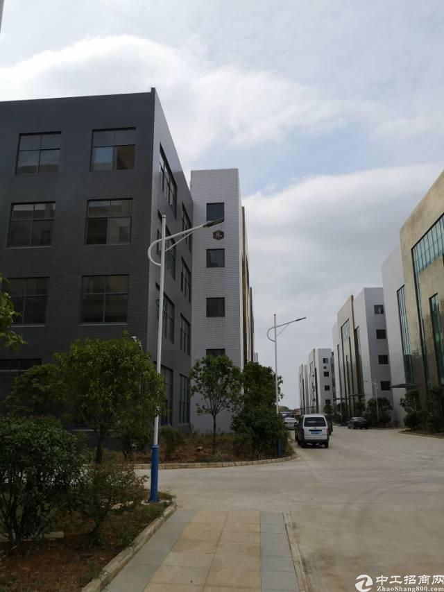武汉阳逻地铁站20000平方米厂房,办公宿舍。
