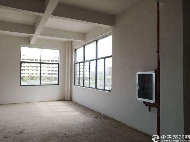 武汉阳逻地铁站20000平方米厂房,办公宿舍。-图2