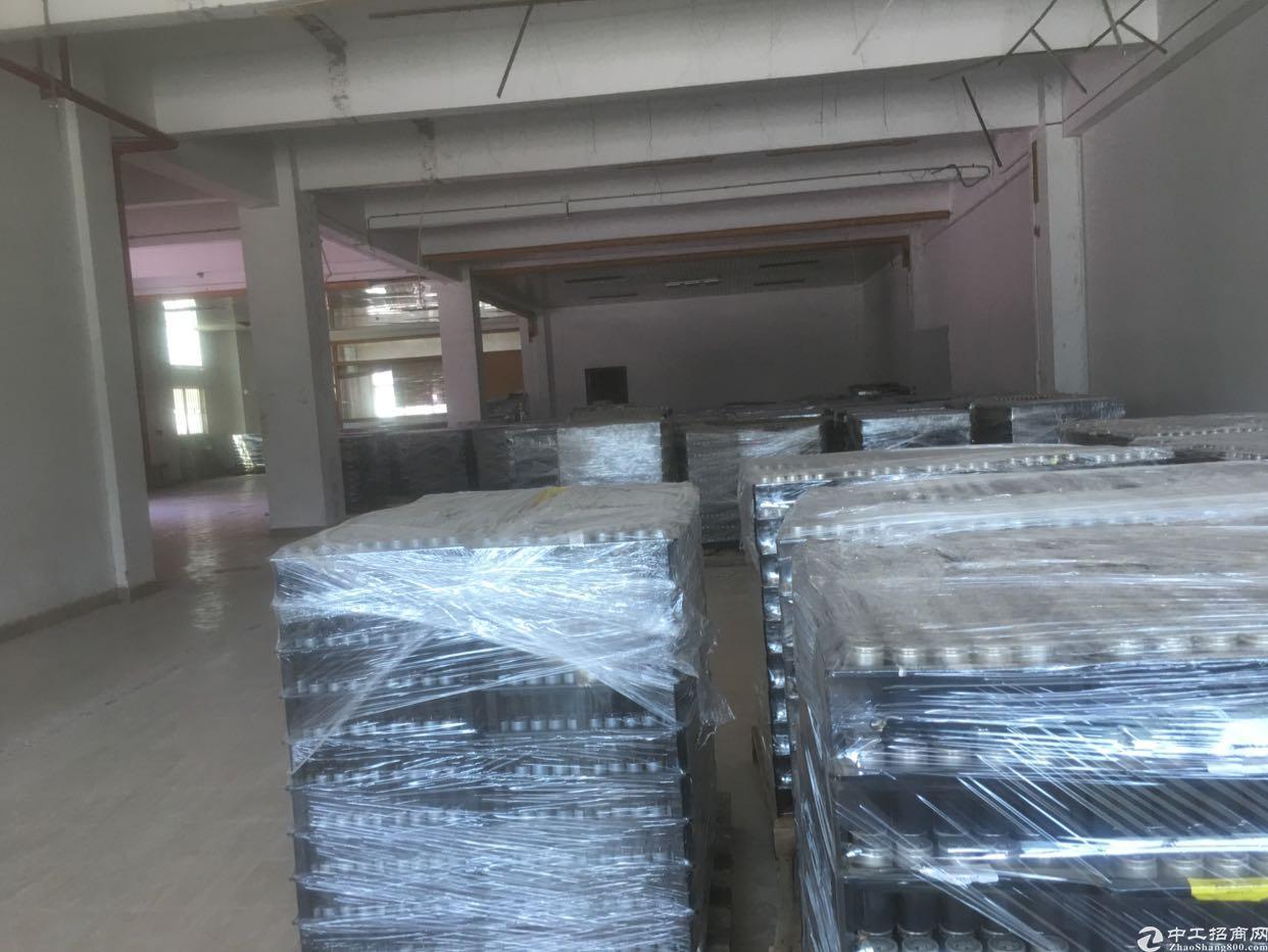 惠阳大亚湾独院厂房低价出租,证件齐全