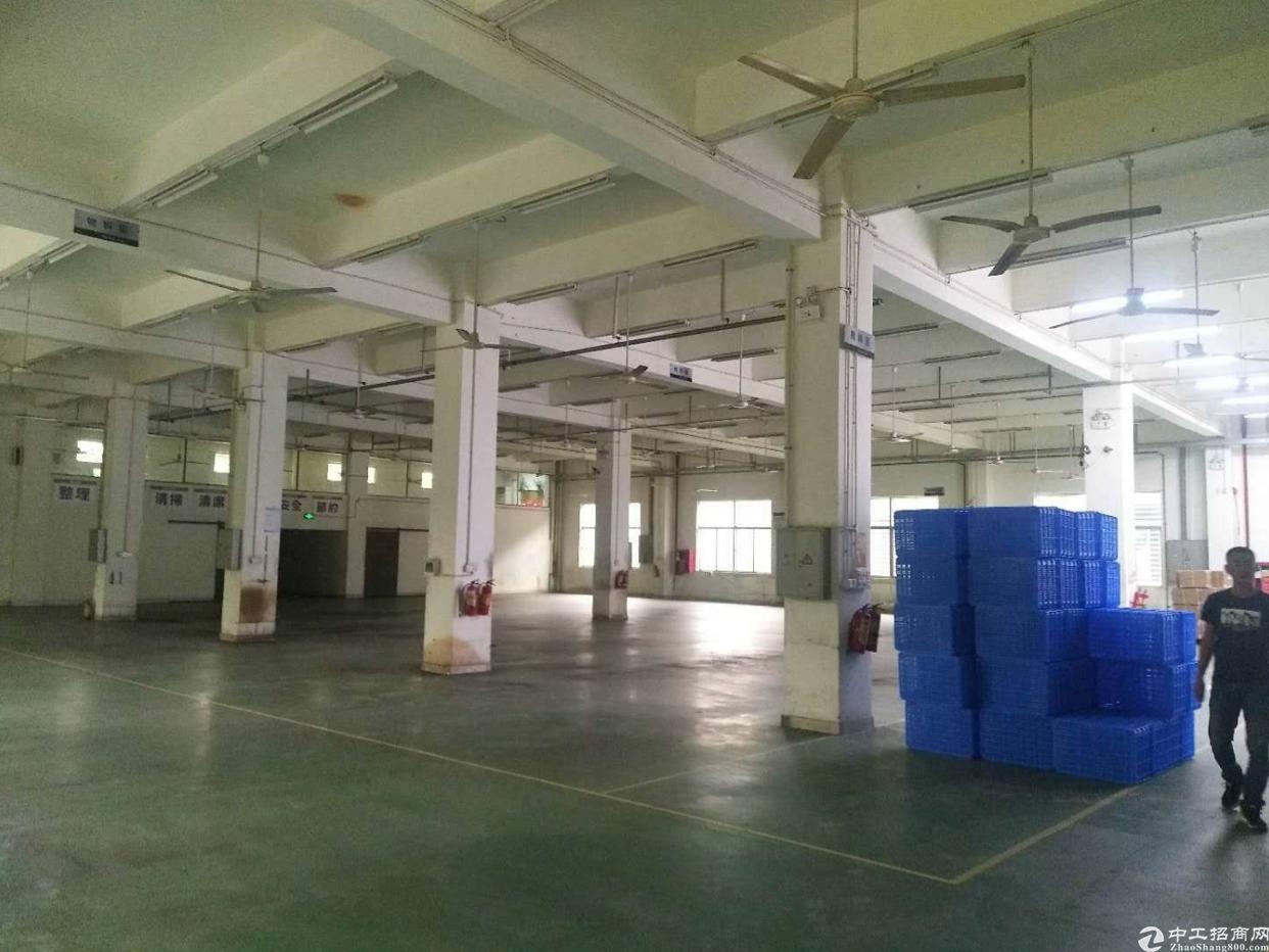 福永怀德一楼1800平带装修招租