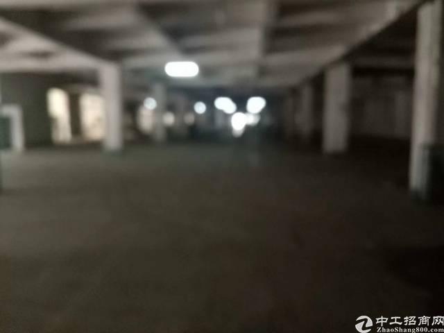 布吉上李朗工业区新2600平标准厂房出租,大小可分