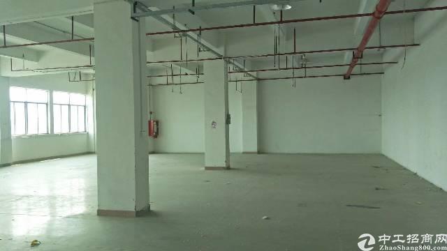茶山原房东标准厂分租1500平方