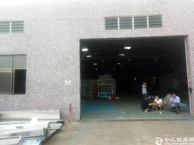 茶山镇砖墙到顶单一层厂房出租