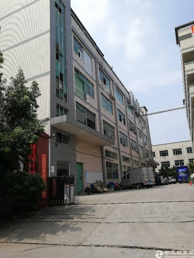 凤岗新出一楼900平米带牛角带地坪漆带办公室标准厂房