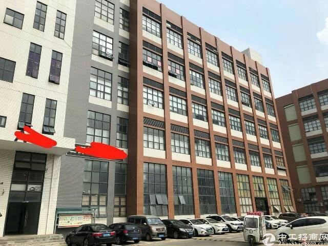 福永新和高速出口附近新出建筑面积带精装修1500平招租