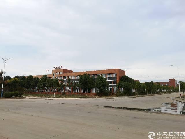 热抢!阳逻管委会地铁站钢构独栋生产办公一体2千平每栋
