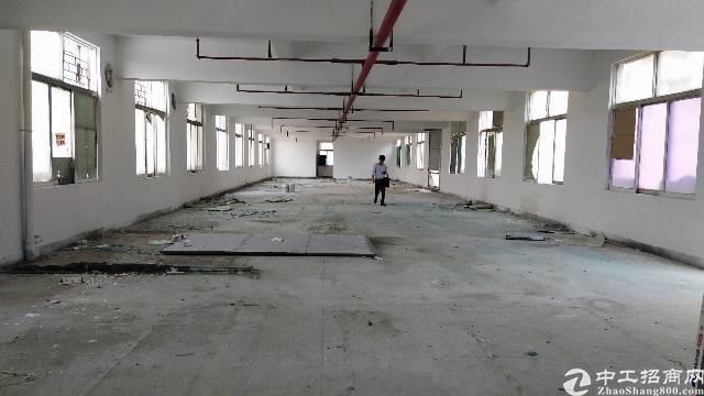 惠阳淡水白云路附近的标准厂房出租550平米