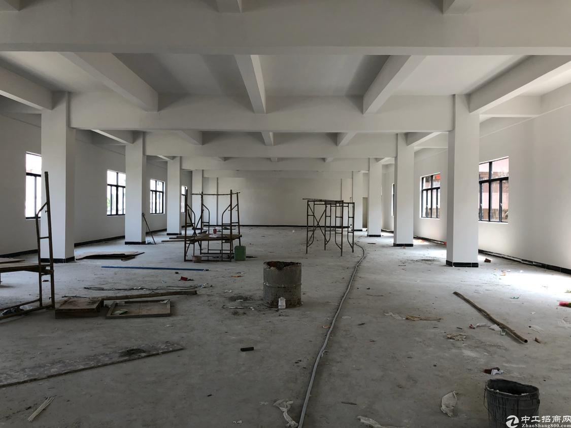 塘厦清湖头全新厂房4层4000平米可以分租