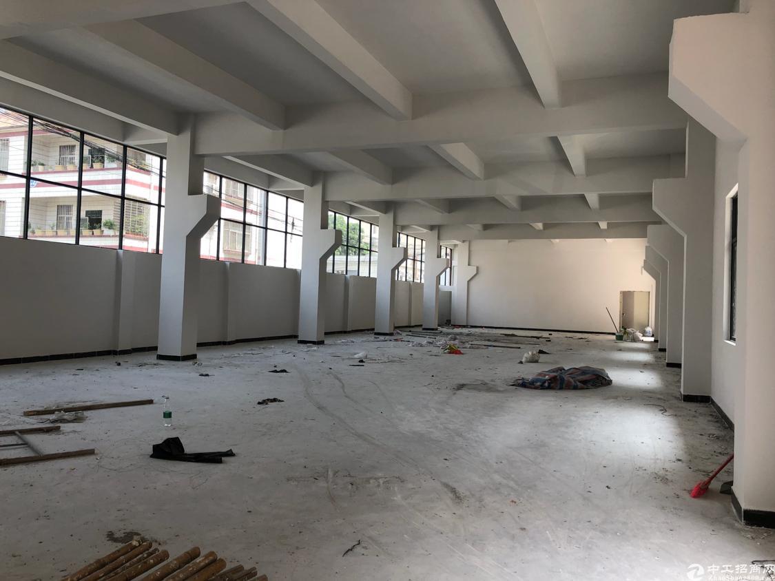 塘厦清湖头全新厂房4层4000平米可以分租-图4