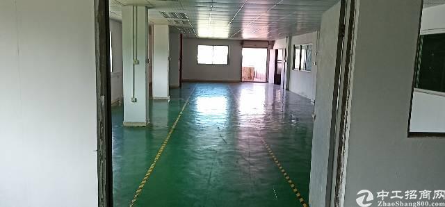 带地坪漆,精装修标准厂房出租