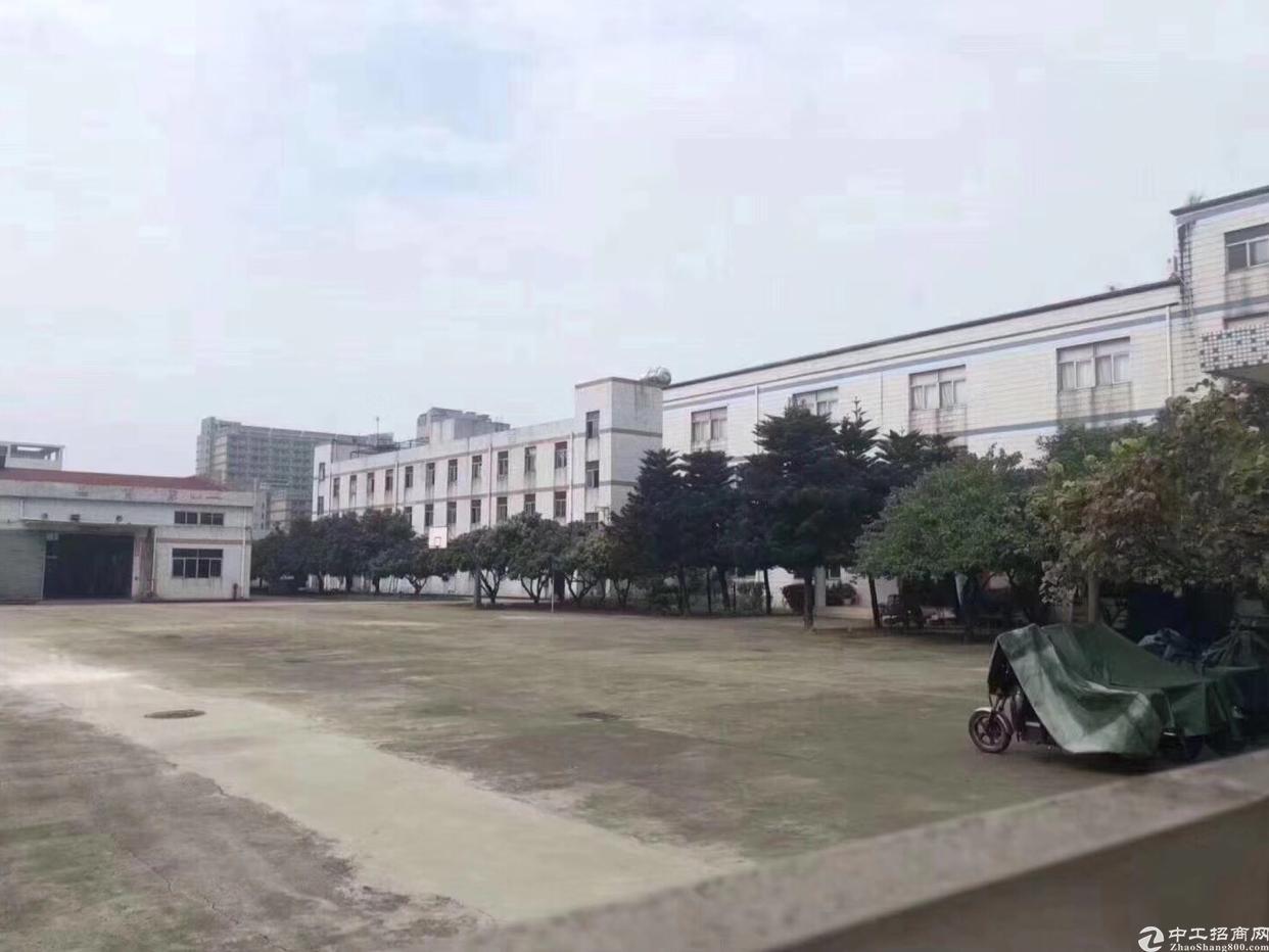 松岗新出超大独院厂房滴水8米原房钢构厂房招租-图6