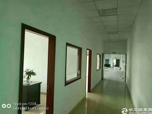松岗红星新出原房东独院厂房,楼上1300平米带装修。有电梯,-图4