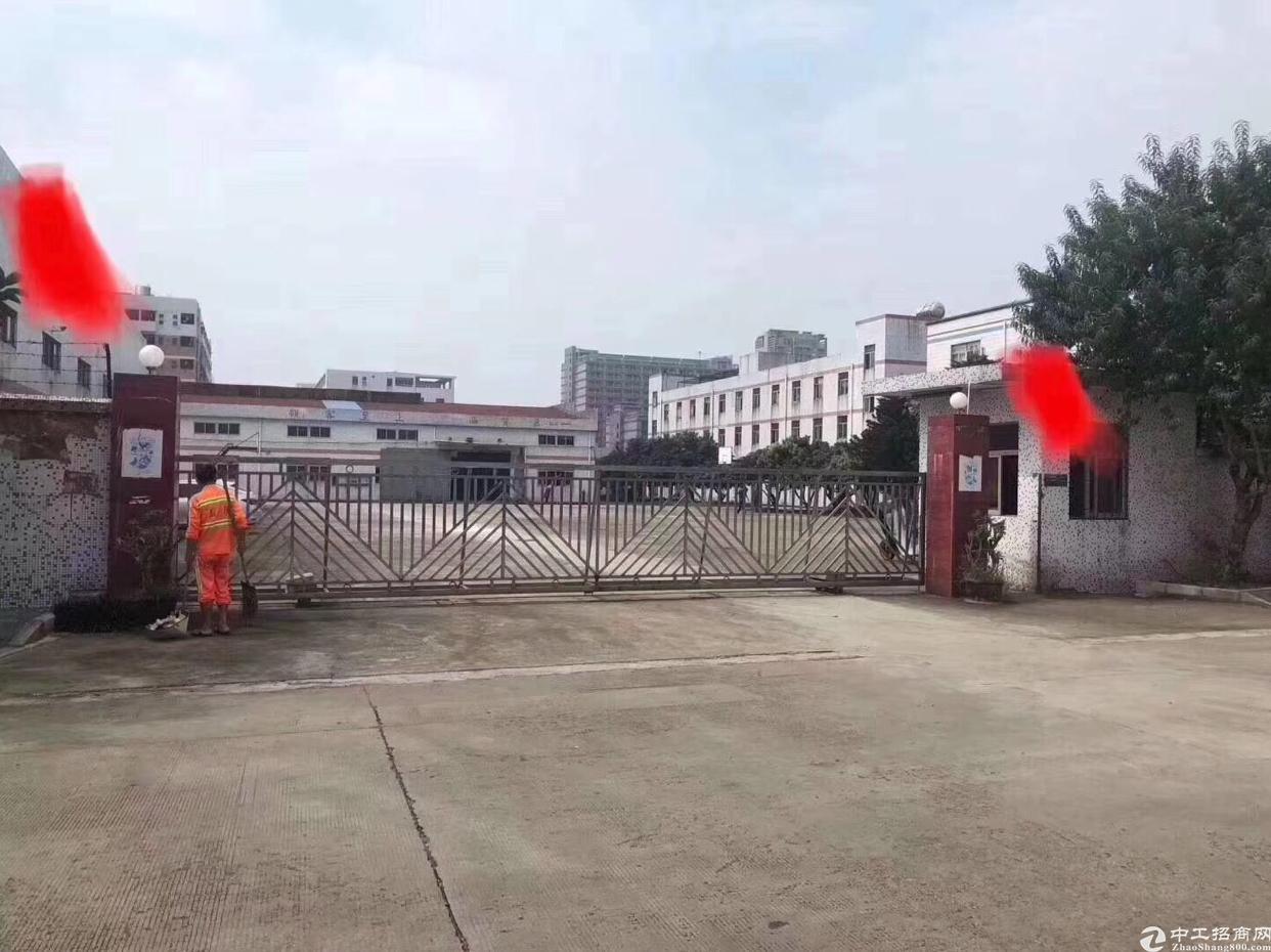 松岗新出超大独院厂房滴水8米原房钢构厂房招租-图3