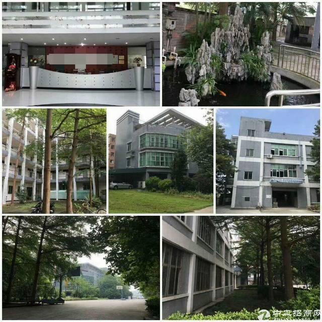 高埗超靓花园式厂房出租标准厂房一楼3938平