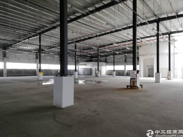 东莞市凤岗镇大型物流园内新出物流仓