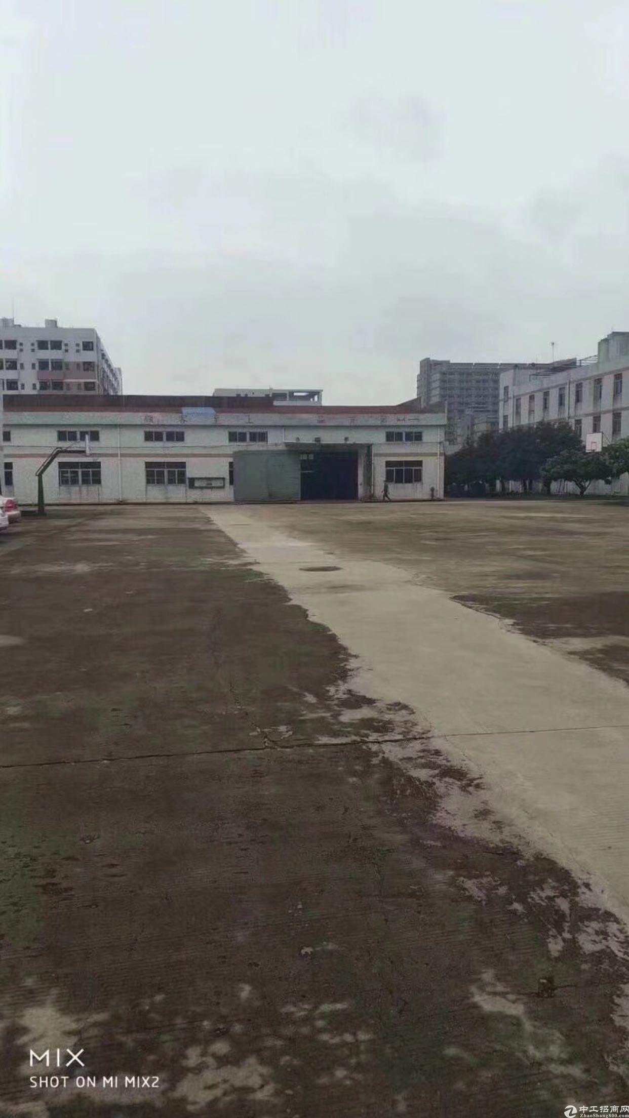 松岗新出超大独院厂房滴水8米原房钢构厂房招租