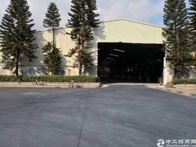 高埗镇全新单一层钢结构厂房出租13000平