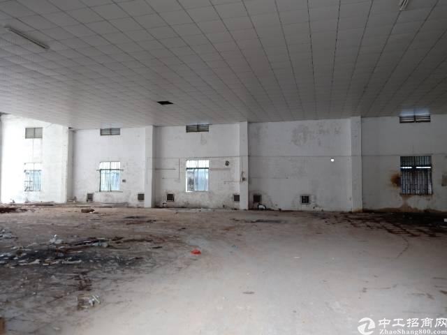 企石标准厂房分租一楼
