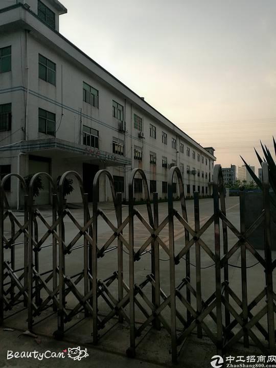 松岗江边新出一楼厂房