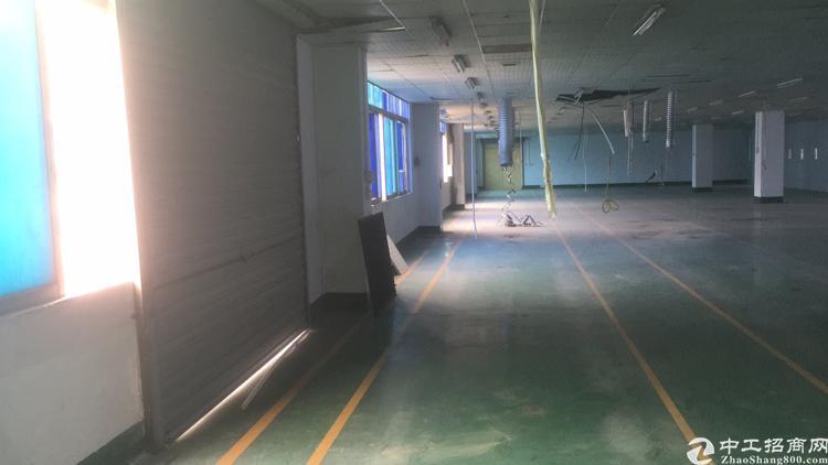 厂房位于福永和平三楼2100平方-图3