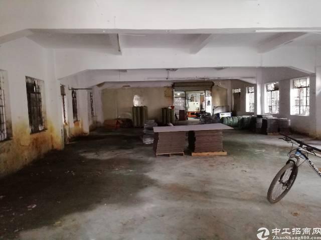 东莞市凤岗镇小面积一楼五百平