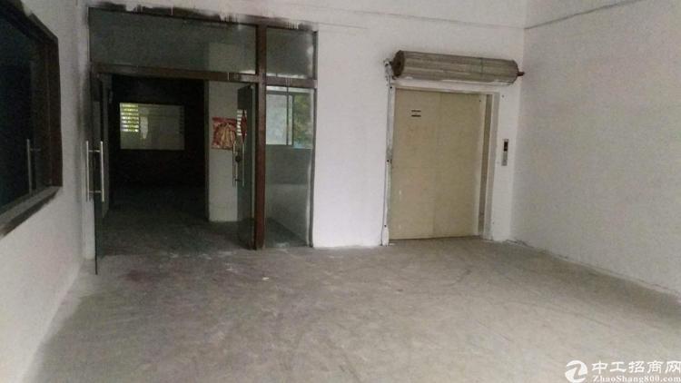 松岗300平方厂房招租村委大小分租厂房原房东