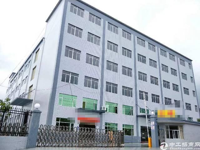 万江环城路边标准厂房出租50000平方租13元