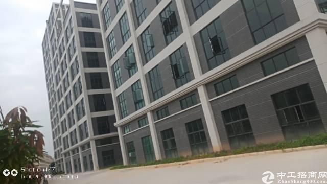 大岭山全新厂房招租,单层面积1680平方,七层,超好形象