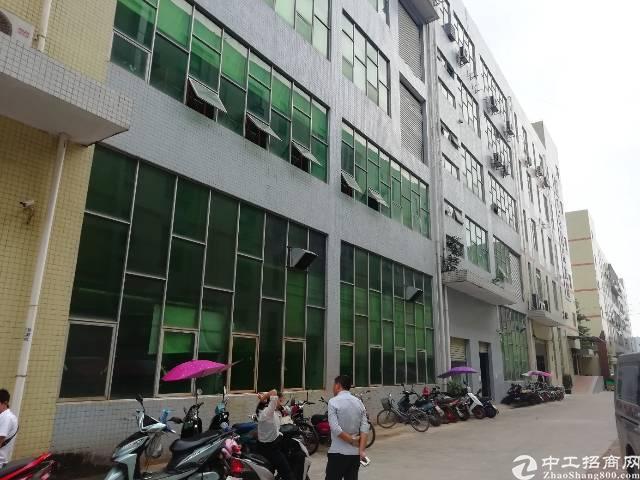 公明原房东一楼3000平方六米高厂房出租。