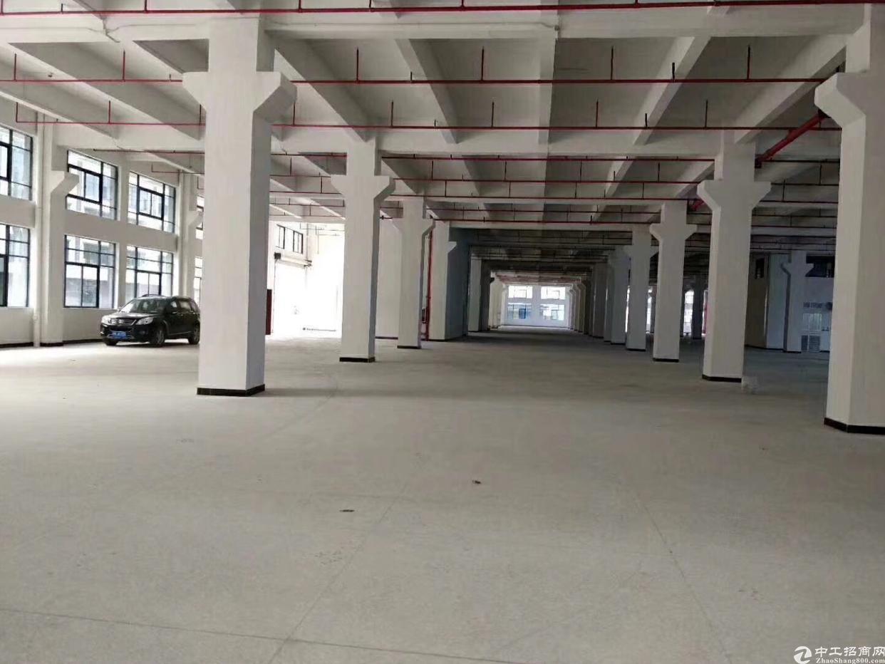 新出原房东全新一楼2300平米