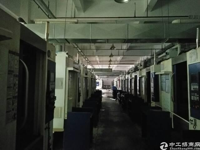 大岭山镇石大路旁原房东一楼厂房2483平米