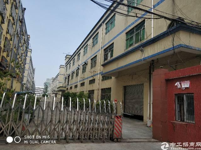 福永独院厂房6000平方带红本